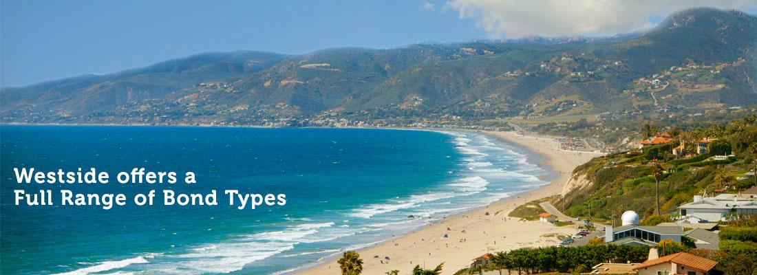 Surety Bonds in Los Angeles | 11321 Iowa Ave.,Los Angeles, CA. 90025 - (310) 479-1250